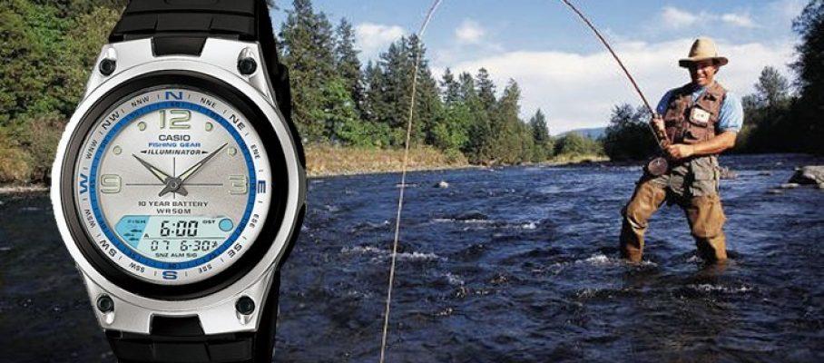 heder-watch-fish
